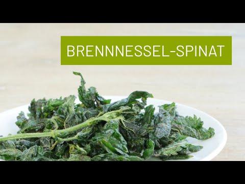Brennnessel Spinat oder Chips – mega lecker und schnell gemacht