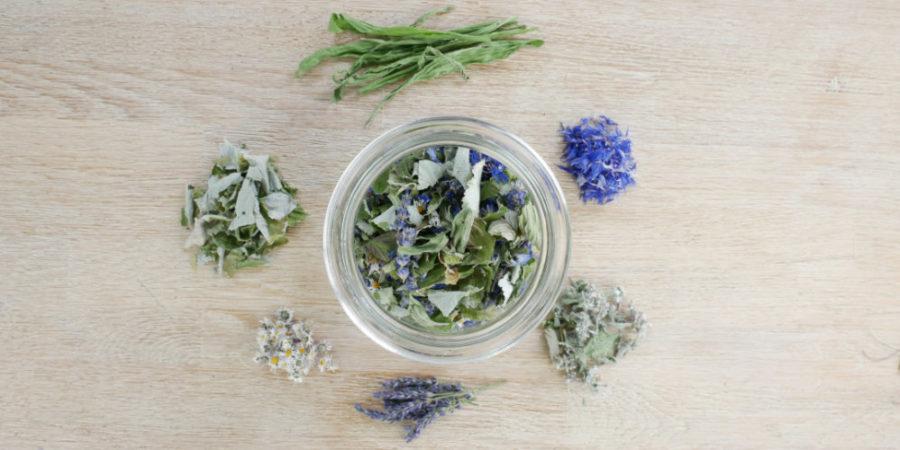 Entspannender Tee am Abend – die Zutaten